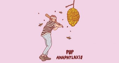 Pup nuova canzone Anaphylaxis